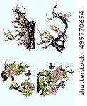 hand drawn vector set birds and ... | Shutterstock .eps vector #499770694