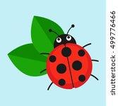 Ladybug On Leaf Vector...