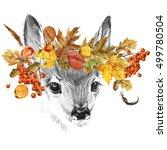 cute fawn. deer sketch. autumn... | Shutterstock . vector #499780504