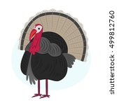 turkey  bird  illustration | Shutterstock .eps vector #499812760