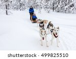 sledding with husky dogs in... | Shutterstock . vector #499825510