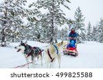 husky dogs are pulling sledge... | Shutterstock . vector #499825588