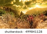 masca valley.canary island... | Shutterstock . vector #499841128