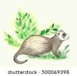 Watercolor Forest  Animal...
