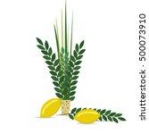 sukkot jewish holiday. jewish... | Shutterstock .eps vector #500073910