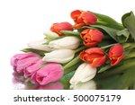 the fresh bouquet of tulips... | Shutterstock . vector #500075179