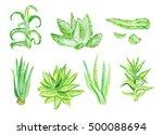 Watercolor Aloe Vera Set...