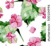pink hydrangea watercolor... | Shutterstock . vector #500104996
