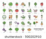 vegetables icon isolated ... | Shutterstock .eps vector #500202910