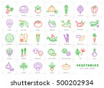 vegetables icon isolated ... | Shutterstock .eps vector #500202934