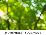 green bokeh nature abstract... | Shutterstock . vector #500274016
