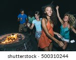 group of friends making party... | Shutterstock . vector #500310244