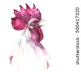 watercolor rooster isoleted on... | Shutterstock . vector #500417320