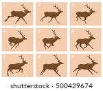 animation deer running | Shutterstock .eps vector #500429674