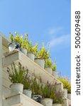 flower pot on the floor. wooden ... | Shutterstock . vector #500609488