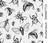 hand drawn vector pattern with... | Shutterstock .eps vector #500687713