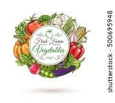 fresh farm vegetables round... | Shutterstock .eps vector #500695948