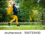 nordic walking   middle age... | Shutterstock . vector #500733430