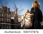 amsterdam the netherlands  ...   Shutterstock . vector #500737876