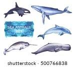 marine hand drawn illustrations ...   Shutterstock . vector #500766838