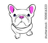 dog  vector  breed  cute  pet ...   Shutterstock .eps vector #500816323