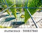 zurich  switzerland   june 28 ... | Shutterstock . vector #500837860