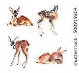Watercolor Four Fawns Baby Dee...