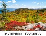 Autumn Foliage In Acadia...