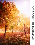 autumn at the morning park | Shutterstock . vector #50093677