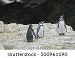 isla damas near la serena chile | Shutterstock . vector #500961190