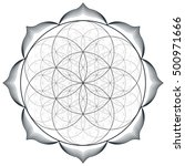vector contour monochrome... | Shutterstock .eps vector #500971666