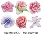 set with flowers. rose. pansies.... | Shutterstock . vector #501102490