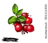 Lingonberry Foxberry  Cowberry...