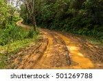 Impassable Forest Road Of Mud...