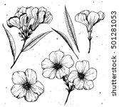 Oleander Flower Vector Graphics ...