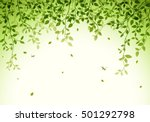 green leaves background | Shutterstock . vector #501292798