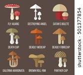 vector set of poisonous... | Shutterstock .eps vector #501377854