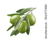 green olives 3 isolated on... | Shutterstock . vector #501477484