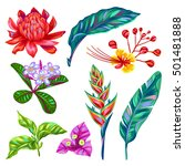 set of thailand flowers.... | Shutterstock .eps vector #501481888