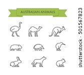 vector line set of australian... | Shutterstock .eps vector #501567823