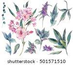 set of floral vintage... | Shutterstock . vector #501571510