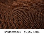 agricultural background of... | Shutterstock . vector #501577288