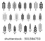 symbols. for logo design wheat. ... | Shutterstock .eps vector #501586753