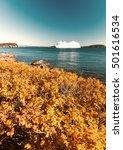 Small photo of Cruise ship along Acadia National Park.