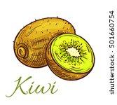 ripe kiwi fruit sketch....   Shutterstock .eps vector #501660754