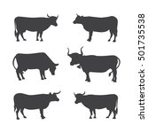 set of different cows  isolated.... | Shutterstock .eps vector #501735538
