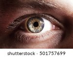 blue eye of men | Shutterstock . vector #501757699
