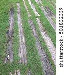 landscape garden floor | Shutterstock . vector #501832339