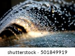 Fountain Water Spashing