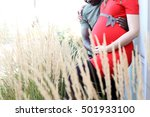 beautifully in love pregnant... | Shutterstock . vector #501933100